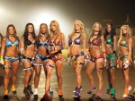 NFL football cheerleaders