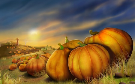 Pumpkin Field - halloween, art, fall, autumn, clouds, sunset, thanksgiving, moonlight, grass, pumpkin field, pumpkins, pumpkin patch