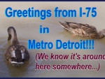 Getting Along Swimmingly in Metro Detroit...
