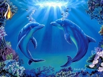 ★Dolphins Dance★