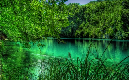Lake Plitvice - lake plitvice, plitvices, plitvice, lake plitvices