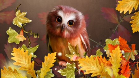 cute owl fall themed wallpapers - photo #24