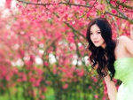 Asian Girl and Pink Flowering Tree