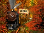 Happy month of October all over the world