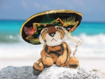 Plush tiger with sombrero