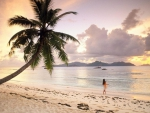Beautiful Seychelles Beach