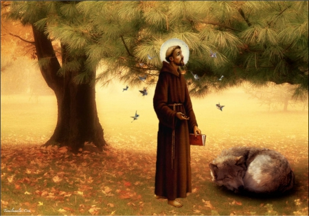 st francis wallpaper-#11