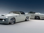 ford thunderbird custom