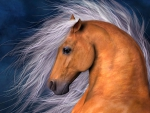Free as the Wind - Horse F1