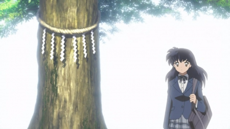 Big Tree - beautiful, pretty, tree, beauty, anime, girl, female, nice, school uniform, bag, kagome, long hair, lovely, inuyasha, anime girl, black hair, sweet