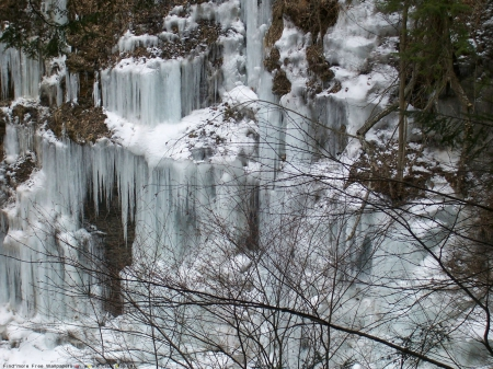 Frozen Waterfall - frozen, waterfall, mountain, trees