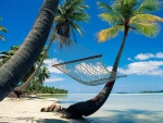 Hammock on Tropical Beach
