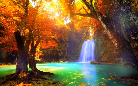 awesome bright autumn scenery - photo #32