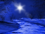 ~*~ Winter Night ~*~