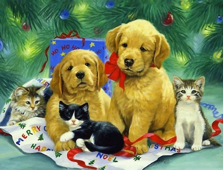 Cute puppy and kitten christmas pictures