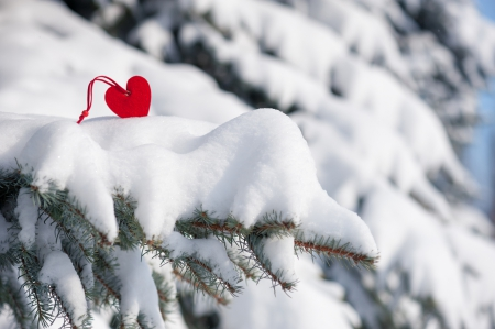 By Nataliz   Winter pictures, Heart in nature, Beautiful ...  Hearts In Nature Winter