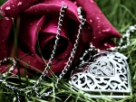 Rose and Locket