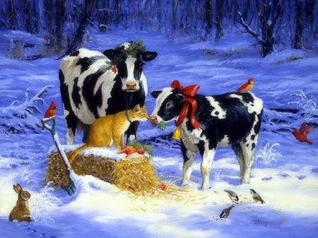 Image result for christmascatsandsnow