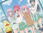 sabagebu! is fun