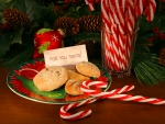 Sweets for Santa Claus