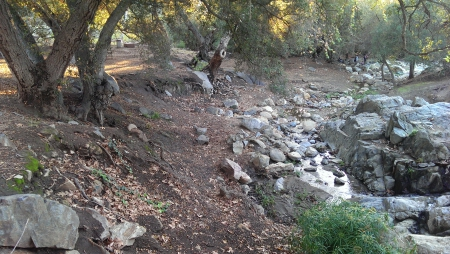 Flinn Springs Park - Nature, Landscape, Creek, Rocks, Trees