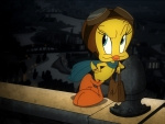 tweety pie