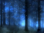 Forest in Blue
