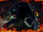 Fiery Black Panther