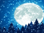 Full Moon on Snowy Night