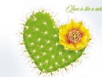 Love Like a Cactus
