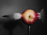 A death of an apple... :)