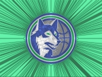 Timberwolves Cracked glass 1st Logo