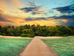 Pier to Tropical Island