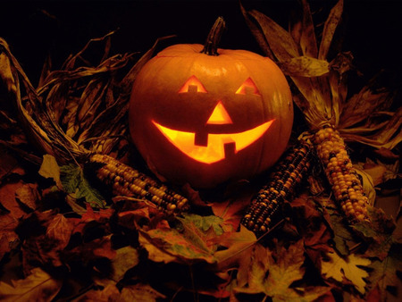 Happy Autumn - jack o lantern, corn, halloween, harvest, fall, autumn, pumpkin, leaves, still life