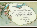 Bluebird of Happiness Greeting