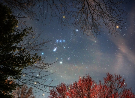 Orion - Orion, space, cool, stars, fun