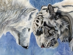 WOLF AND TIGER ART