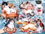 Kitten Collage F2C