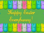 Happy Easter, Everybunny!