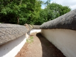 Thatched Walls