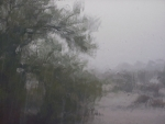 Arizona Monsoon Storm