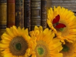 Sunflowers with the Books
