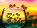 Little Flowers in Glass