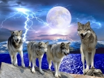 Lightening wolves