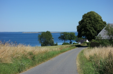 Summer day - tree, summer, road, view