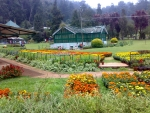 Ooty Botanical Garden,Tamil Nadu State India