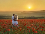 Couple in poppy field