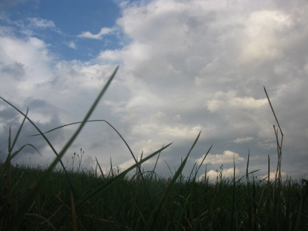 grass and clouds - clouds, sky, green grass, grass