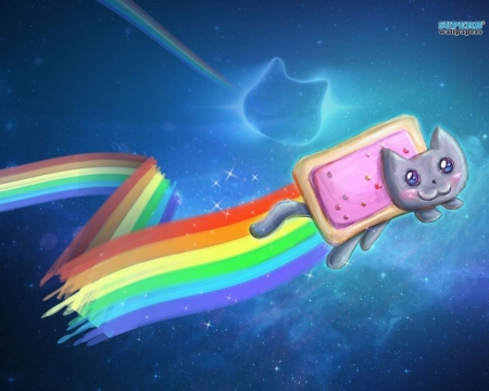 Nyan Cat - space, Amazing, Cute, Awesome, Nice, Cool, Nyan cat, Stuffies, Magistic