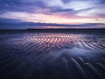 sand ripples on a beach at a pink sunset